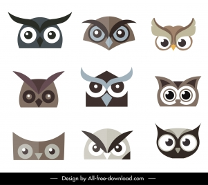 owl faces icons flat symmetric design