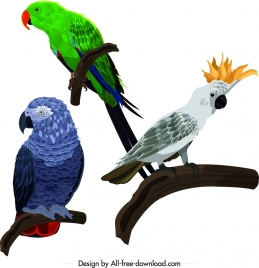 parrot icons perching gesture design colorful sketch