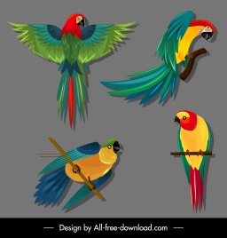parrot species icons colorful sketch flying perching gestures
