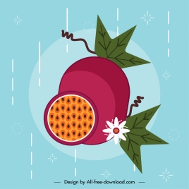 passion fruit icon colorful classical flat handdrawn sketch