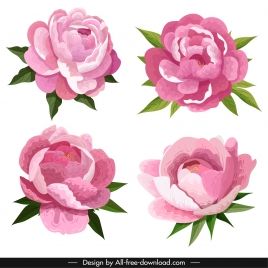 peony petals icons colored classical sketch