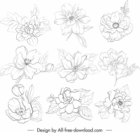 petals icons black white handdrawn sketch