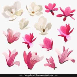 petals icons colored classical design