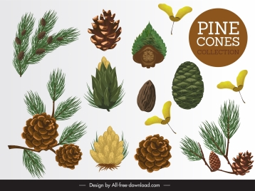 pine design elements leaf seed flower sketch