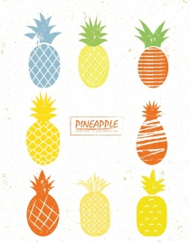 pineapple icons collection various colored design