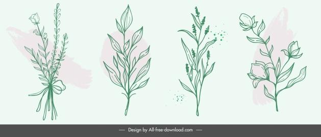 plants icons retro handdrawn floras leaves sketch