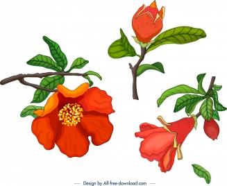 pomegranate tree design elements flower fruit bud icons