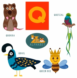 q letter education with cute animals illustration