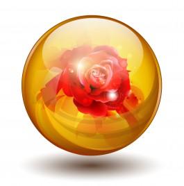 red rose flower inside orb sphere ball