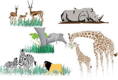 reindeer rhino zebra panther giraffe icons collection