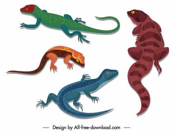 reptile icons gecko salamander sketch colored design