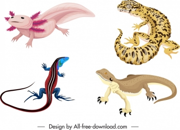 reptile species icons colored gecko salamander dinosaur sketch