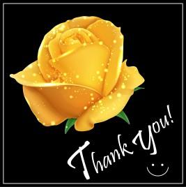 romantic yellow rose flower