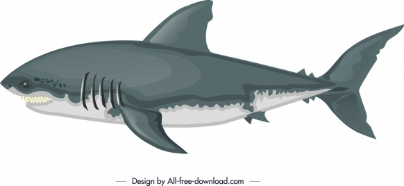 shark painting white grey sketch