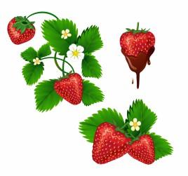 Srawberrys