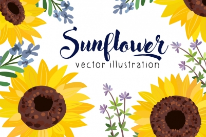 sunflowers background multicolored handdrawn decor