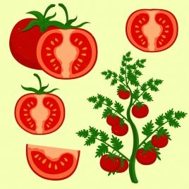 tomato design elements red green decor