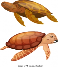 tortoise species icons shiny red sketch swimming gesture