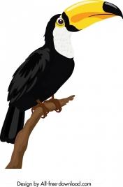 toucan bird icon colorful modern design