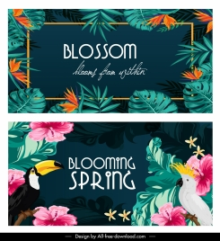 tropical backgrounds colorful leaves parrots decor