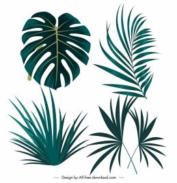 tropical design elements green leaf shapes sketch