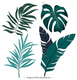 tropical leaf icons classic handdrawn outline