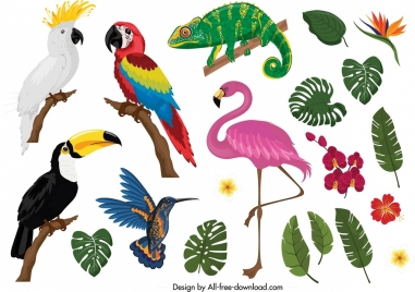 tropical nature design elements animals plants icons