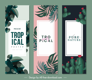 tropical nature poster templates leaves cactus sketch