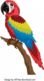 tropical parrot icon colorful cartoon sketch