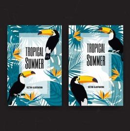 tropical summer background birds leaves decoration multicolored design
