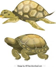 turtle creatures icons shiny colored sketch