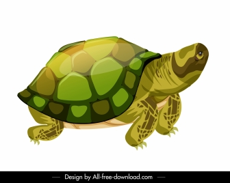 turtle icon shiny colorful sketch