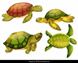 turtle species icons shiny modern colorful sketch