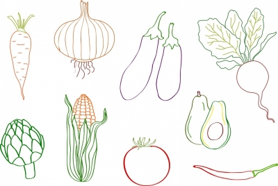 vegetables icons collection flat colored sketch