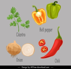 vegetables icons colored classical handdrawn outline