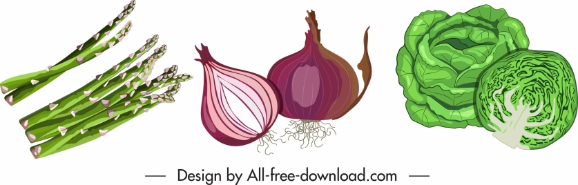 vegetables icons onion cabbage asparagus sketch classic design