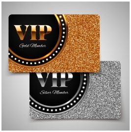 vip card vector illustration with gold silver style
