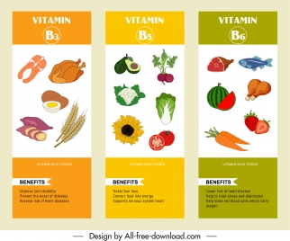 vitamin b infographic templates colorful handdrawn food sketch