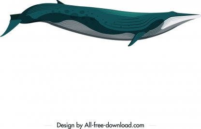 whale animal icon blue white decor motion design