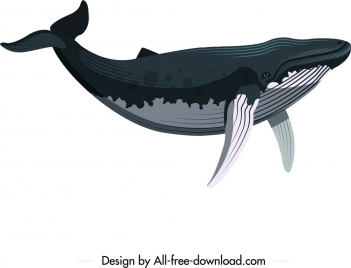 whale animal icon colored cartoon sketch