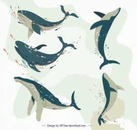 whale icons swimming gesture design
