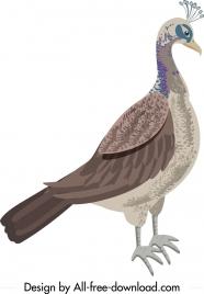 wild peacock icon simple decor colored handdrawn sketch