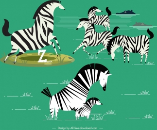 wild zebra herd painting colored classical design