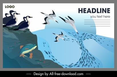 wildlife banner seabirds fishes sketch motion design