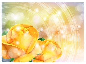 yellow rose romantic background