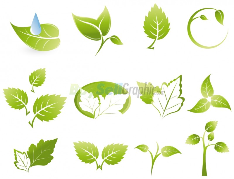 Leaf Logo Vectors Photos and PSD files  Free Download